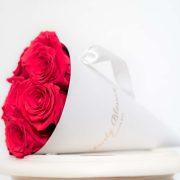 crvene-ruze-bijeli-stozac